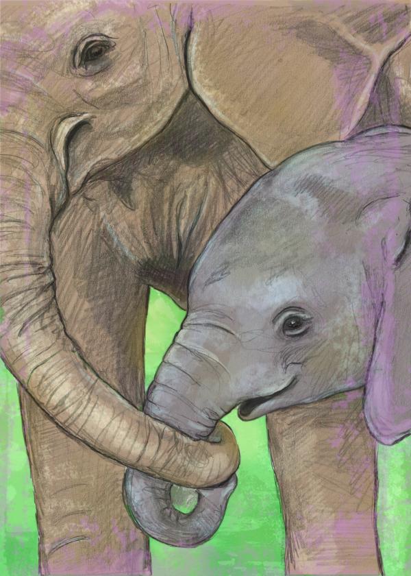 elephant_card